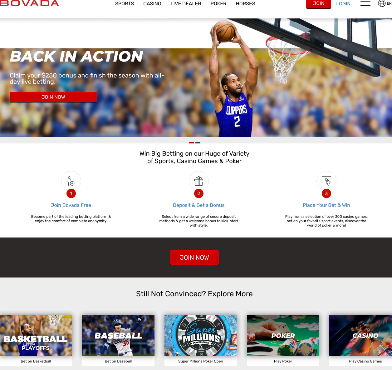 Online sports betting bovada paul witten ladbrokes betting